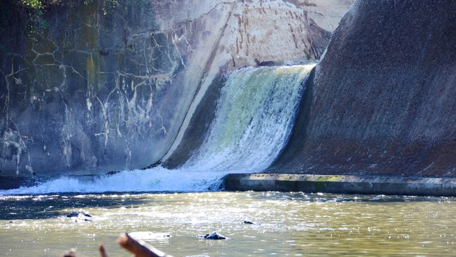 Fish swim upstream below the Ballville Dam after a notch was cut into the concrete structure. The 104-year-old dam is scheduled for demolition next year.