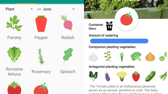 Vegetable Pot Garden App
