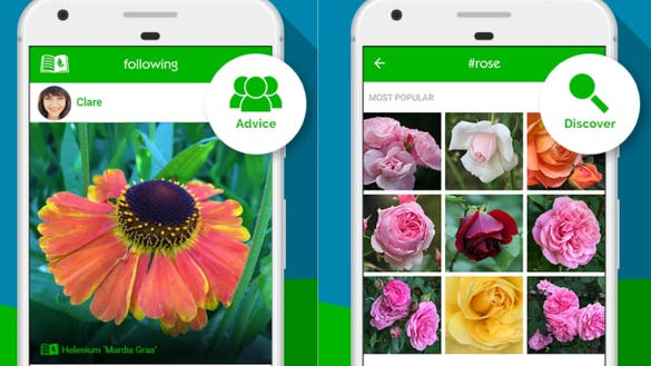 GardenTags – Plant ID & Care