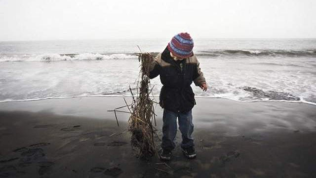 Truman Burnett of Portland finds a treasure from the ocean at Fort Stevens State Park.