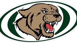 North Star High School logo