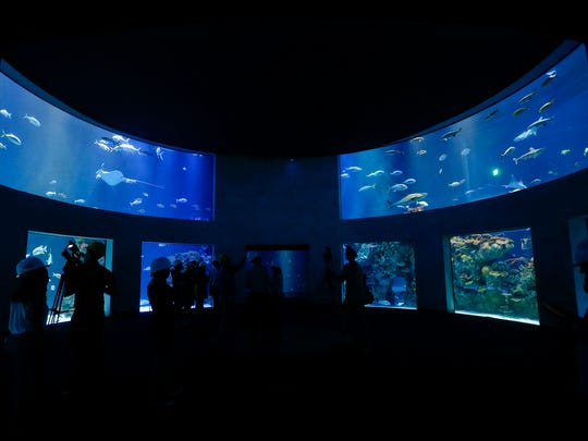 Members of the media tour the Great Oceans Hall at