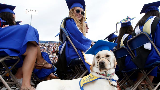 Rye II sits at the feet of Christina Billy of Newark, who has been working with Rye to train her as a service dog with Canine Companions for Independence as the two attend the University of Delaware commencement, honoring 5883 undergrad and graduate degree recipients Saturday at Delaware Stadium.