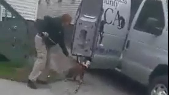 This image, taken from a video, shows a dog being removed by an animal control officer for the City of Poughkeepsie from a residence on Winnikee Avenue on April 27. City police are investigating the incident after a video, posted on social media, sparked calls.