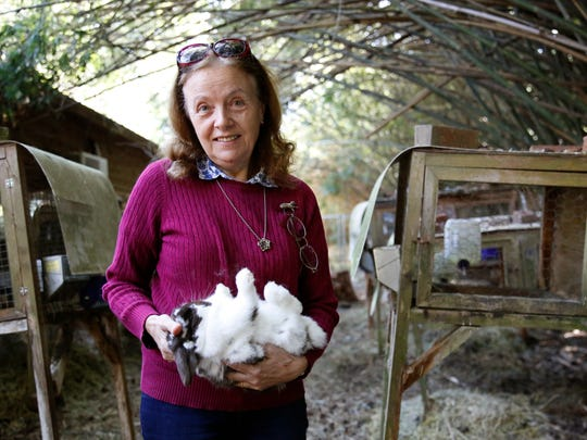 Founder Marianne Horchler holds one of the Holland lop rabbits she breeds at BunnyLops rabbitry in Thomasville, Georgia on Wednesday.