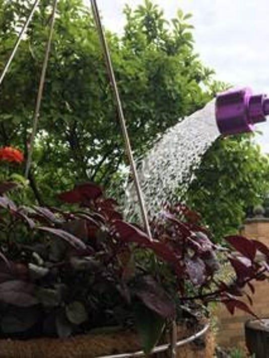 636649163863575699-Watering-plants.jpg