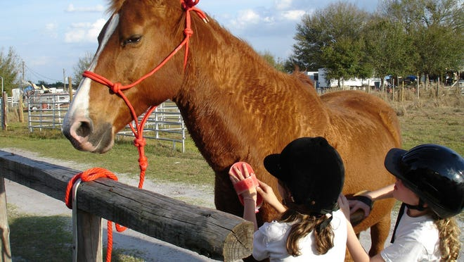 Feel like horsin' around? Horse Happy Hour at HorseSisters Equine Assisted Therapy & Rescue offers a horse happy hour on Thursdays.