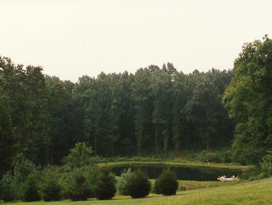Kathy Pentz's pond in the late 90's. Submitted/photo
