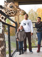The NEW Zoo is a short 15-minute drive north of Green Bay. One of the popular stops at the family-friendly destination is the giraffe enclosure where you can get up close and personal with the inhabitants.