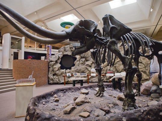 Exchange Mastodon Move (2)