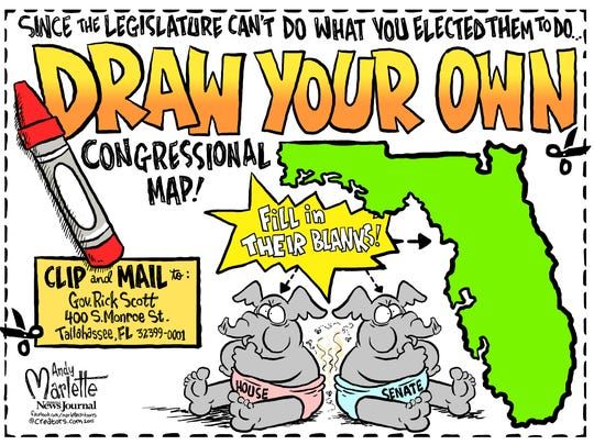Draw you own Congressional Map cartoon