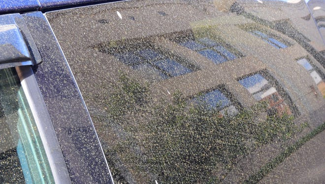 A coating of yellow pine pollen has covered vehicles in the Jackson metro area for the past few weeks.