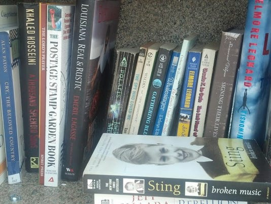These books were inside the Little Free Library in York. Photo by Rebecca LeFever