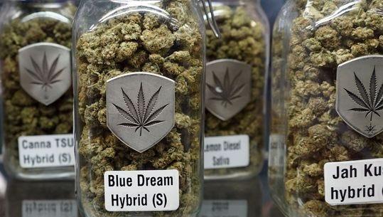 Blue Dream is a popular strain of marijuana.