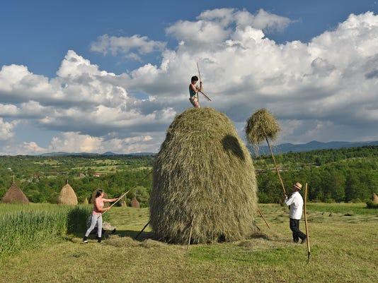 636465302377530035-romania-maramures-hay-bales-081017-ch.jpg