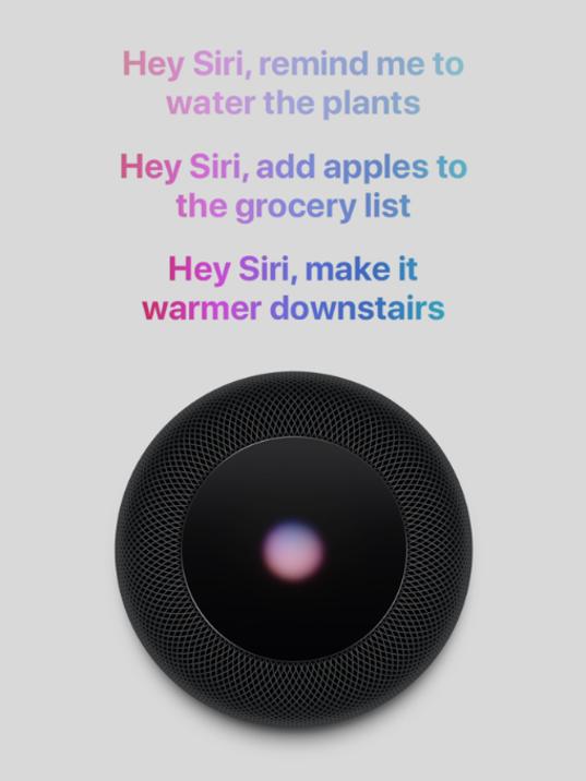 636585476795856293-Apple-Siri---HomePod.png