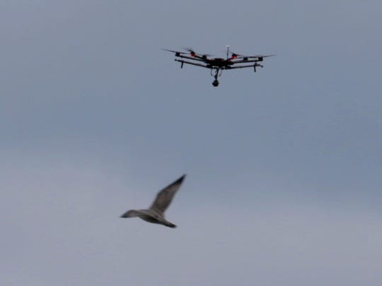 A gull flies near a drone flying over the Bucks new arena.