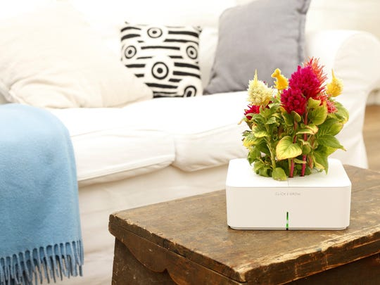 Click and Grow products let you grow herbs, vegetables, fruits and flowers indoors in the smallest of spaces.