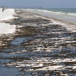 RESTORE Advisory Committee to cut contenders in half for funds from the BP Deepwater Horizon oil spill.