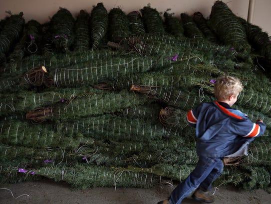 Weston Hitz, 5, sprints past a pile of 200 Christmas