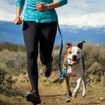 10 things that will make running with your dog easier