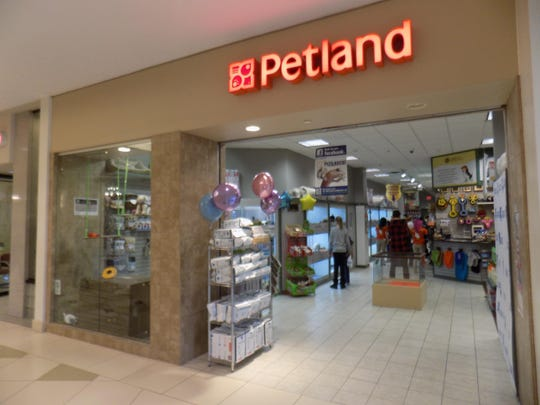 Petland Novi was the subject of an undercover investigation by the Humane Society of the United States, which said in a report the store sells sick and dying animals that have also infected people.