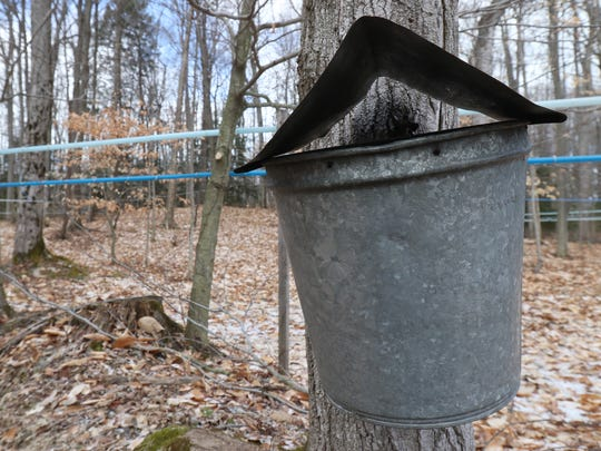 The Milkes of Shadow Hill Maple Syrup use a couple