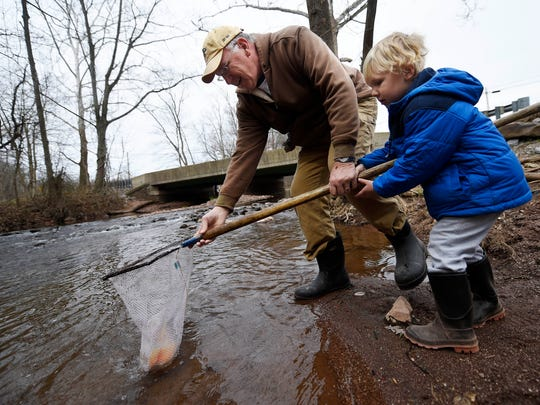 Bill Moul of Newberry Township helps his grandson, 4-year-old Ryder Paup of Lewisberry, as they release trout into Fishing Creek in Goldsboro Wednesday. Volunteers made eight stops along Fishing Creek, stocking trout to prepare for the upcoming fishing season.