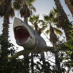 "One of the giant mechanical sharks from ""Jaws"" presides over Aadlen Brothers Auto Wrecking in the Sun Valley section of Los Angeles. The family business, a living, breathing monument to Los Angeles pop culture, is closing on New Year's Eve."