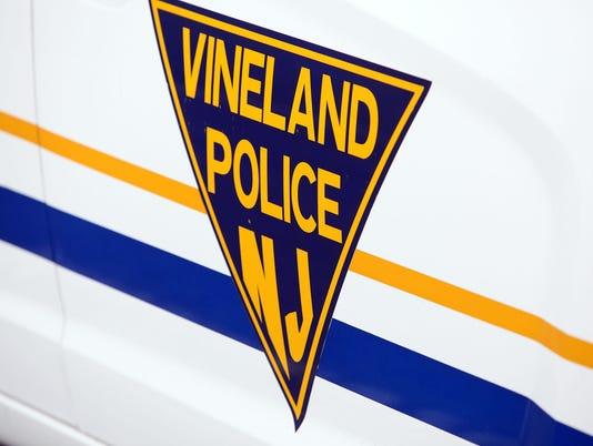 Vineland Police carousel