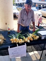 A special type of sweet onion called Talladalias are offered by Rich Pouncey of Bumpy Road Farms at the Tallahassee Farmer's Market.