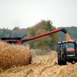 The 2016 corn harvest continued last week as growers not hampered by wet fields and high plant moisture content forged ahead.