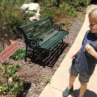 Bees and Butterfly Day in Camarillo is 'opportunity for history to go forward'