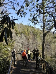 Start the new year with a hike to Upper Bear Wallow