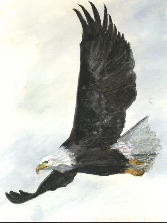 635927088046606922-Bald-Eagle-copy-2.jpg