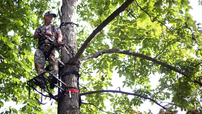 Dave Cash scans the horizon for deer as he stands in a tree stand in the backyard of a house in southeast Springfield during an urban deer hunt.
