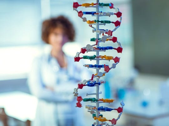 A DNA double helix model.
