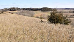 Sibley State Park is among those offering special deer hunts this season.