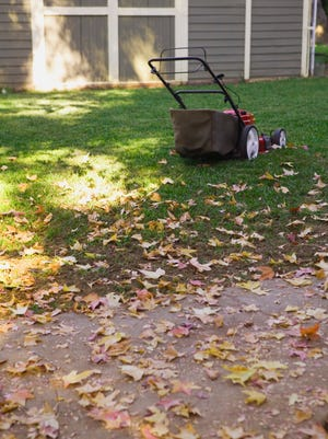 Early fall is a great time to seed, renovate, and establish lawns.