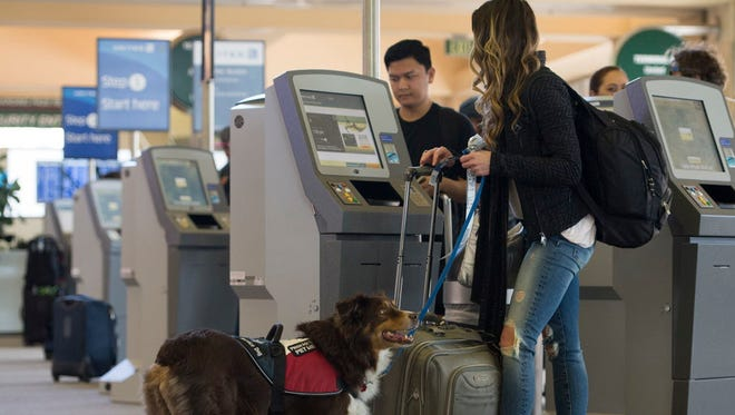 Zoe Bedford and her companion dog Basha check in for their Thanksgiving trip to Denver on Nov. 23, 2016, in Santa Ana, Calif.