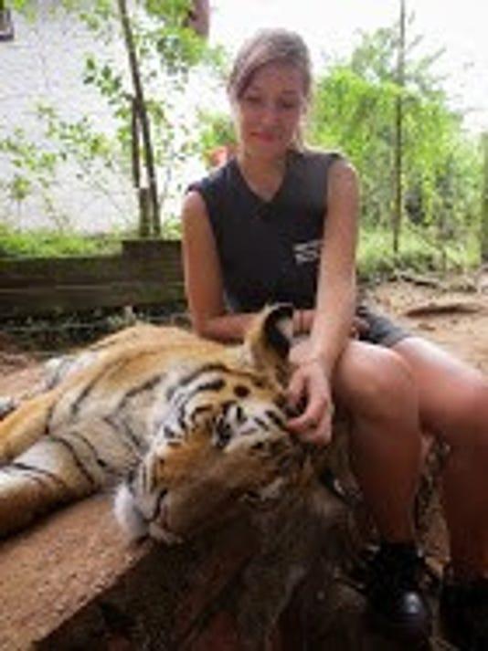 636343573387592927-Bengal-Tiger-3.jpg