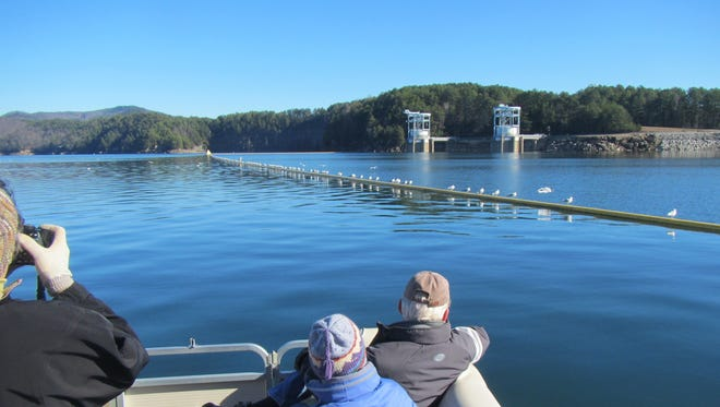 Birdwatchers observe the wildlifre on Lake Jocassee on a winter trip. Scientists are studying loons wintering on the lake, which is unusual because the waterfowl typically winter in coastal areas.