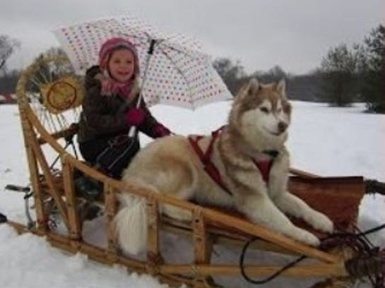 Door County Sled Dogs will offer dog sled rides at