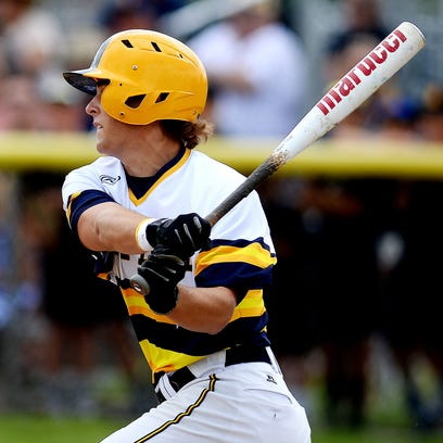 Grand Ledge, Fowler land pair on all-state baseball teams