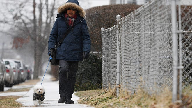 Rich Park walks his dog as snow falls in Rutherford on Saturday, December 30, 2017.