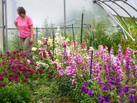 Jane Merdan walks through one of her greenhouses Tuesday,