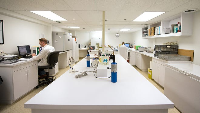 Microbiologics has tripled its revenue and doubled its workforce since 2008.