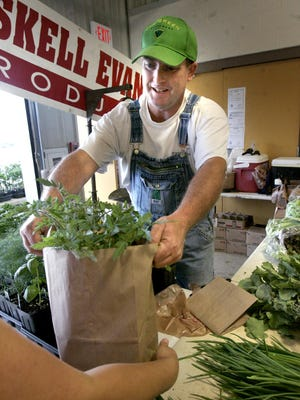 Haskell Evans of Gladeville bags some tomato plants for a customer on opening day at the Farmers' Market on May 8, 2015, at Lane Agri-Park on John Rice Boulevard in Murfreesboro.