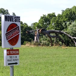 Shawshank Tree Falls Down