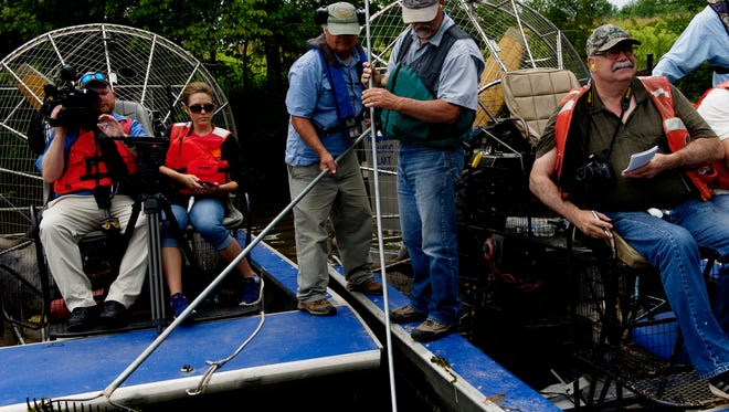 TVA workers and media gather to pull hydrilla out of the water during a media day held by TVA plant management biologists at Watts Bar Reservoir in Rockwood, Tennessee on Thursday, June 29, 2017. The TVA is involved in the plant management of invasive aquatic plants that mass around docks and rivers which can force native plant life from its natural habitat.